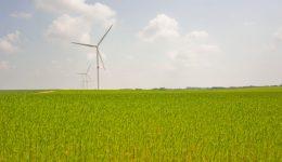 Wind farm of VERLAINE